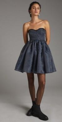 Seamed Tulle Mini Dress