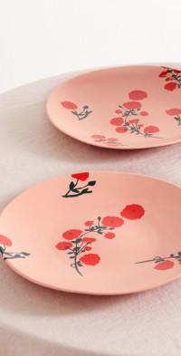 Set of two 29cm ceramic dinner plates