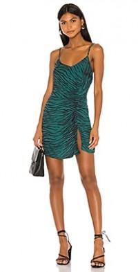 Sierra Ruched Mini Dress