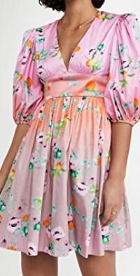 Ombre Floral Mini Dress