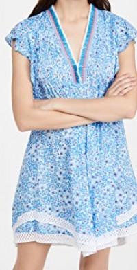 Sasha Lace Trimmed Mini Dress