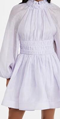 Luminous Long Sleeve Mini Dress